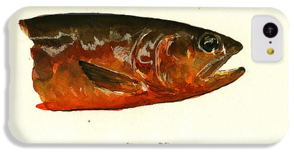 Trout iPhone 5c Case - Golden Trout  by Juan  Bosco