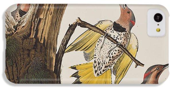 Golden-winged Woodpecker IPhone 5c Case by John James Audubon