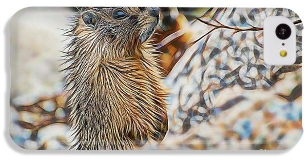 Groundhog iPhone 5c Case - Good Morning by Marvin Blaine
