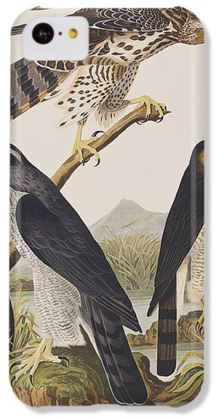 Goshawk And Stanley Hawk IPhone 5c Case by John James Audubon