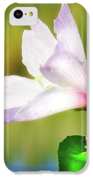 Grasshopper And Flower IPhone 5c Case