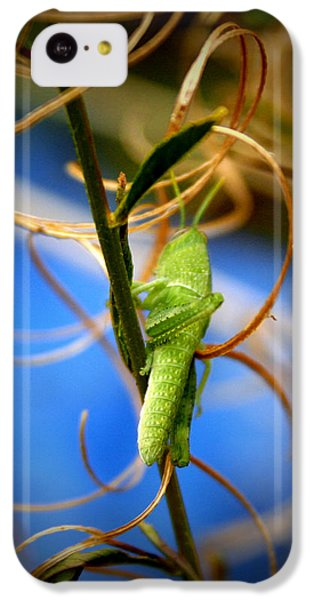 Grasshopper iPhone 5c Case - Grassy Hopper by Chris Brannen
