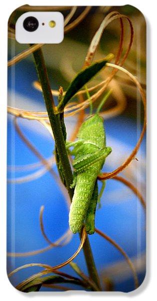 Grassy Hopper IPhone 5c Case by Chris Brannen
