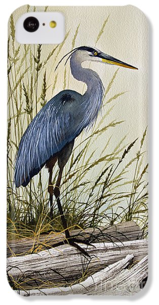 Great Blue Heron Splendor IPhone 5c Case