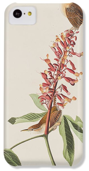 Great Carolina Wren IPhone 5c Case by John James Audubon
