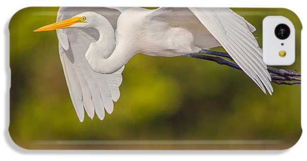 Great Egret Folded Wings IPhone 5c Case