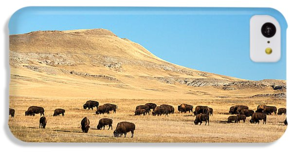 Great Plains Buffalo IPhone 5c Case by Todd Klassy