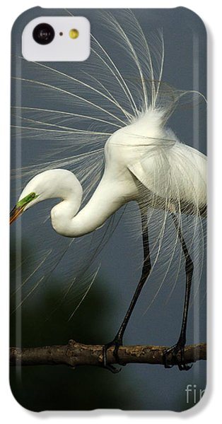 Majestic Great White Egret High Island Texas IPhone 5c Case