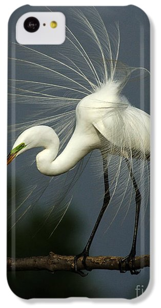 Majestic Great White Egret High Island Texas IPhone 5c Case by Bob Christopher