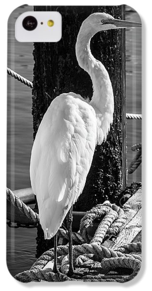 Great White Heron In Black And White IPhone 5c Case