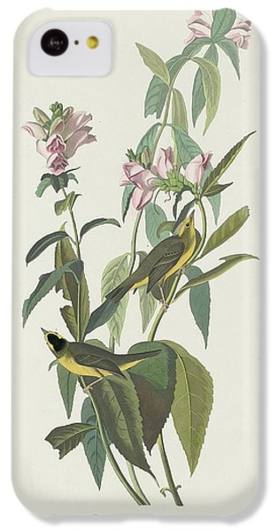 Flycatcher iPhone 5c Case - Green Black-capt Flycatcher by Dreyer Wildlife Print Collections