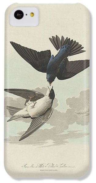 Green-blue Or White-bellied Swallow IPhone 5c Case