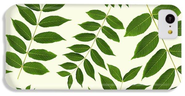 Botanical Pattern IPhone 5c Case by Christina Rollo