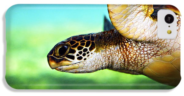 Reptiles iPhone 5c Case - Green Sea Turtle by Marilyn Hunt