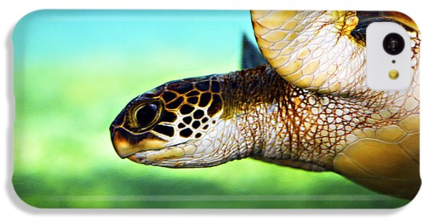 Green Sea Turtle IPhone 5c Case by Marilyn Hunt