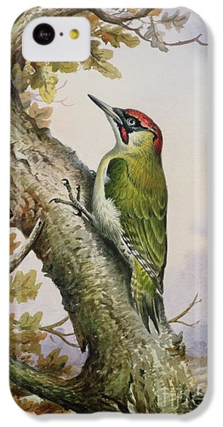 Green Woodpecker IPhone 5c Case by Carl Donner