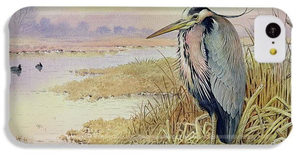 Grey Heron IPhone 5c Case by John James Audubon