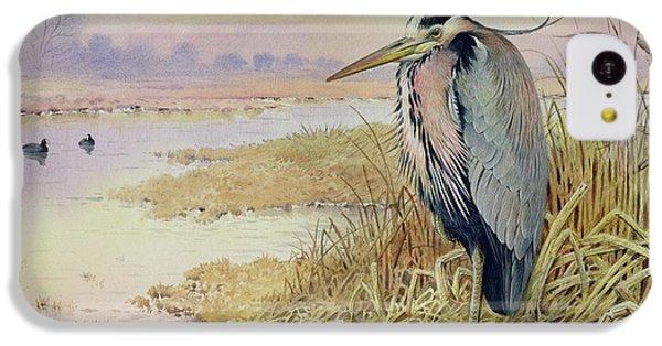Grey Heron IPhone 5c Case by John James Audubon