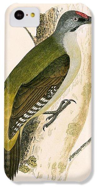Grey Woodpecker IPhone 5c Case
