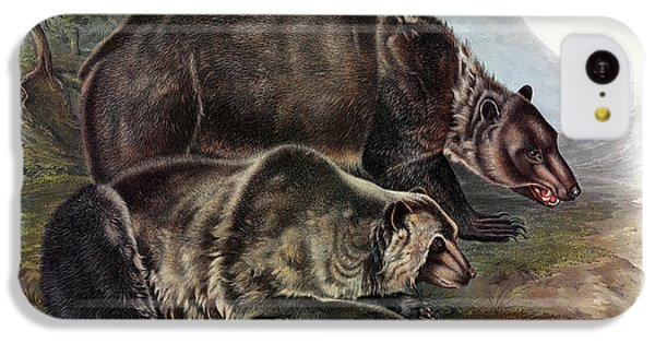 Brown Bear iPhone 5c Case - Grizzly Bear by John James Audubon