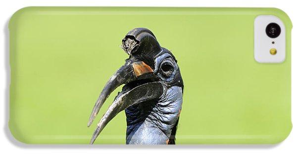 Ground Hornbill IPhone 5c Case