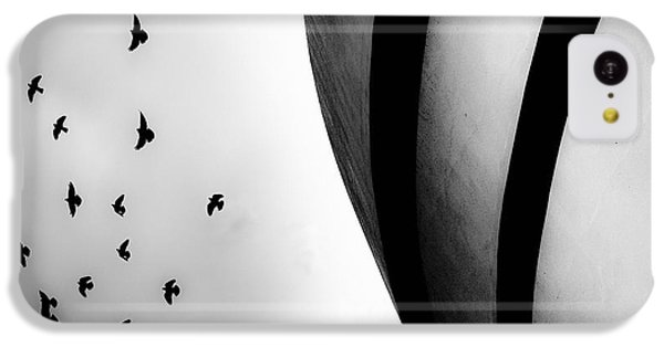 Guggenheim Museum With Pigeons IPhone 5c Case