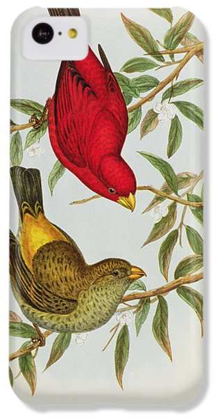 Finch iPhone 5c Case - Haematospiza Sipahi by John Gould