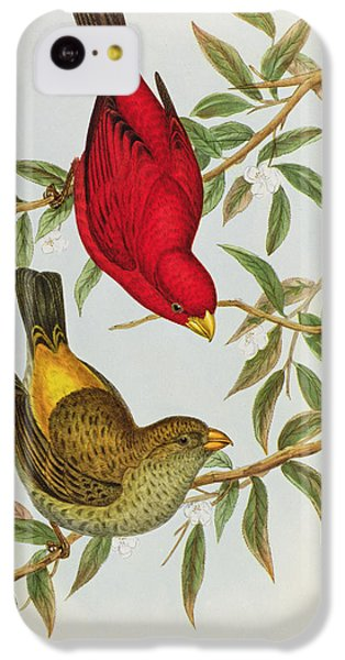 Haematospiza Sipahi IPhone 5c Case by John Gould
