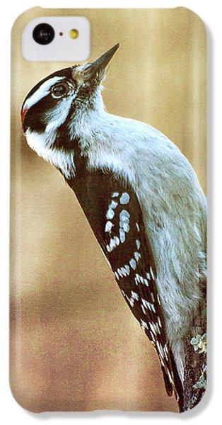 Hairy Woodpecker IPhone 5c Case