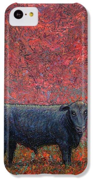 Bull iPhone 5c Case - Hamburger Sky by James W Johnson