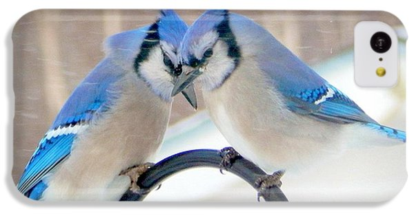 Bluejay iPhone 5c Case - Heart To Heart by Karen Cook