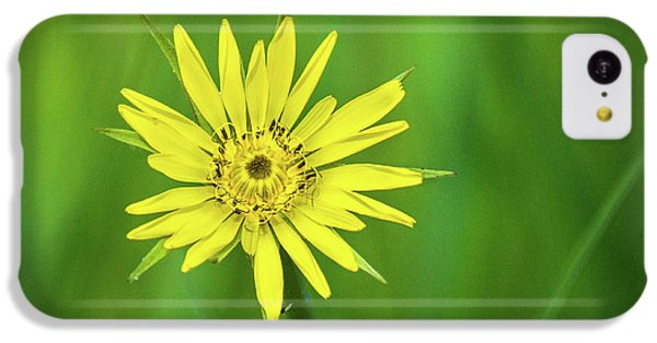 IPhone 5c Case featuring the photograph Hello Wild Yellow by Bill Pevlor