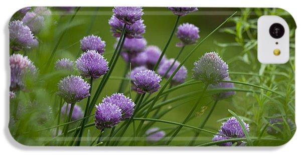 Herb Garden. IPhone 5c Case