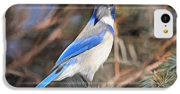 Bluejay iPhone 5c Case - Here's Looking At You,  Kid by Donna Kennedy