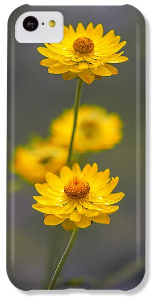 Hillflowers IPhone 5c Case