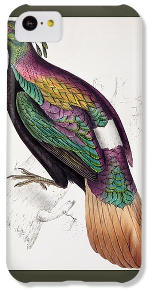 Himalayan Monal Pheasant IPhone 5c Case by John Gould