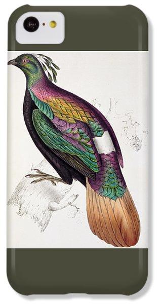 Himalayan Monal Pheasant IPhone 5c Case