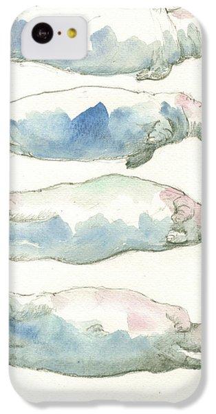 Hippopotamus iPhone 5c Case - Hippo Swimming Study by Juan Bosco