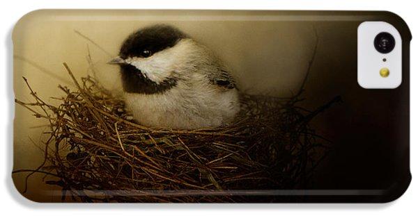 Home Tweet Home IPhone 5c Case by Jai Johnson