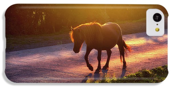 Horse iPhone 5c Case - Horse Crossing The Road At Sunset by Mikel Martinez de Osaba
