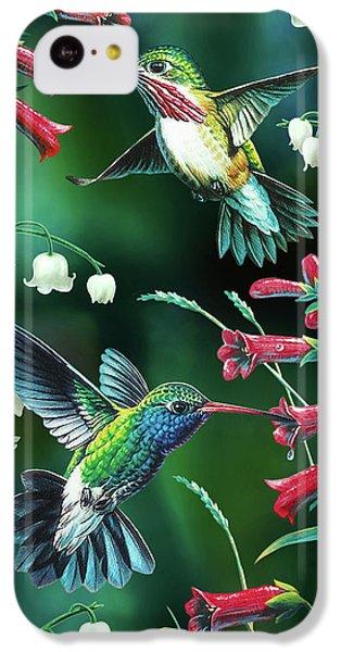 Humming Bird iPhone 5c Case - Humming Birds 2 by JQ Licensing