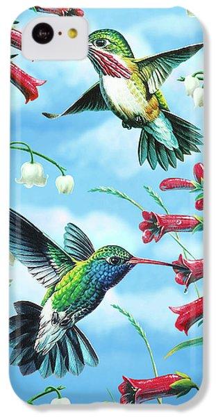 Humming Bird iPhone 5c Case - Humming Birds by JQ Licensing