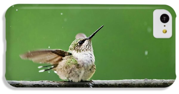 Humming Bird iPhone 5c Case - Hummingbird In The Rain by Christina Rollo