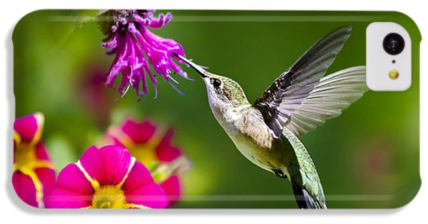 Hummingbird With Flower IPhone 5c Case