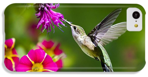 IPhone 5c Case featuring the photograph Hummingbird With Flower by Christina Rollo