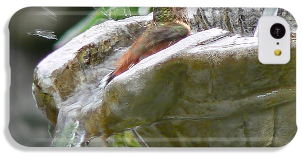 Humming Bird iPhone 5c Case - Hummingbirds Do Take Baths by Jennie Marie Schell