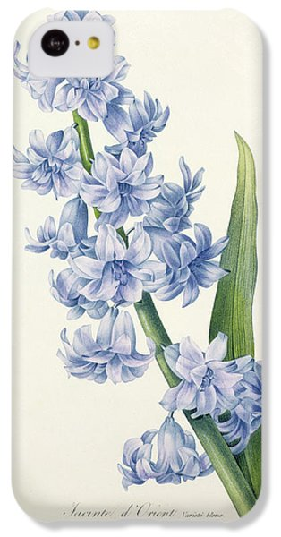 Hyacinth IPhone 5c Case by Pierre Joseph Redoute