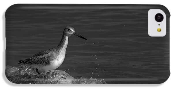 Sandpiper iPhone 5c Case - I Can Make It - Bw by Marvin Spates