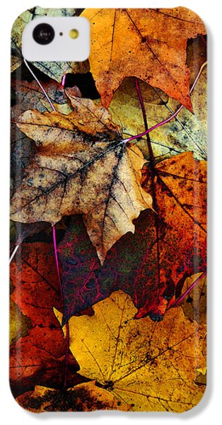 I Love Fall 2 IPhone 5c Case