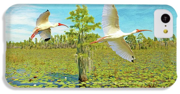 Ibis iPhone 5c Case - Ibis At Okefenokee by Laura D Young